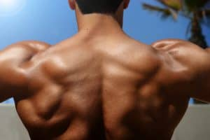 photo of a bodybuilder's back muscles