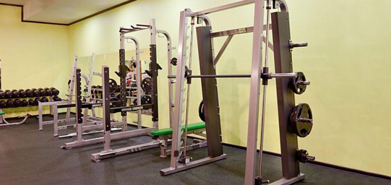 Hammer Strength Smith Machine Review Bar Weight Price